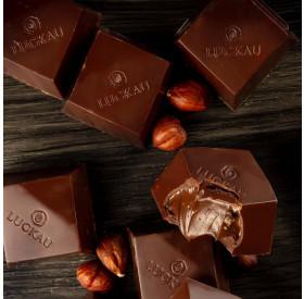 Bombom de Chocolate Belga 54% Cacau com recheio de Avelã 20g