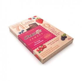 Chocolate Sense Frutas Vermelhas 71% 25g - CHOCOLIFE