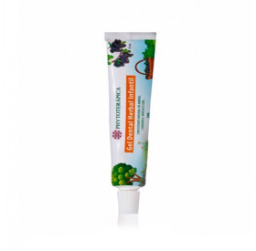 Gel Dental Herbal Infantil Frutas Vermelhas 50g - PHYTOTERÁPICA