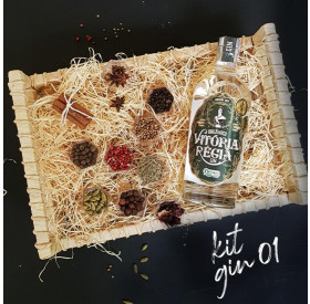 KIT Presente Gin Tradicional Premium Empório Figueira