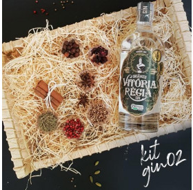 KIT Presente Gin Tradicional Simples Empório Figueira