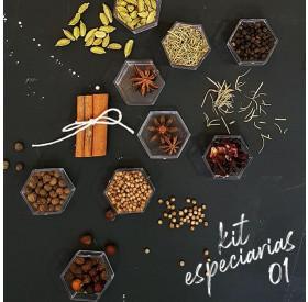 KIT Presente Especiarias para Gin Premium
